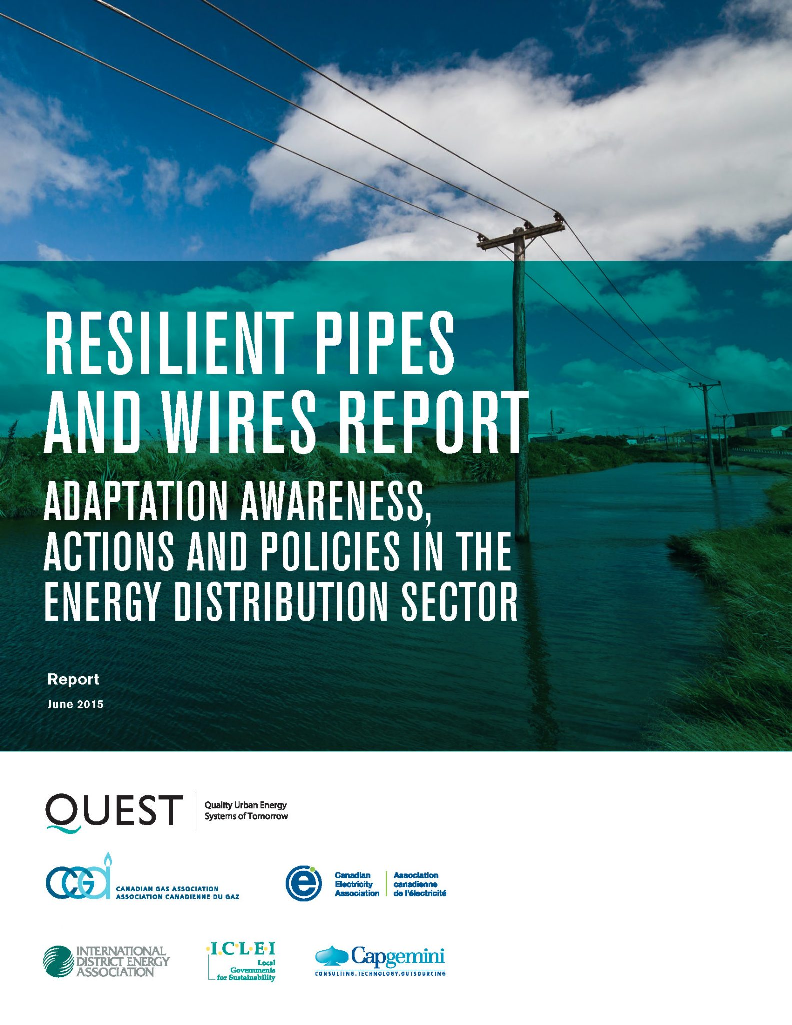Resilient Pipes and Wires Adaptation Awareness, Actions and Policies in the Energy Distribution Sector