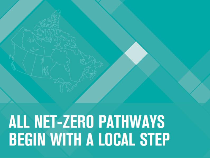 Diverse Pathways to Net-Zero